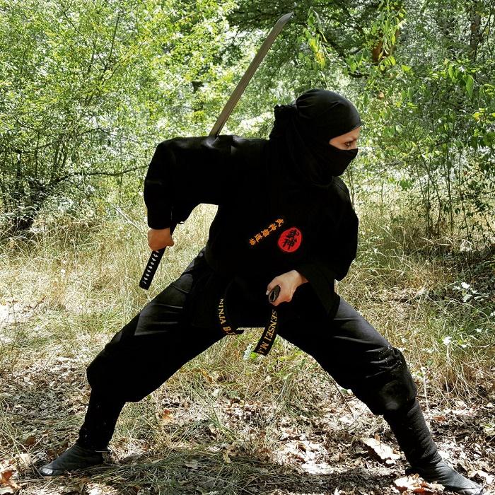 ninja96_13.jpg